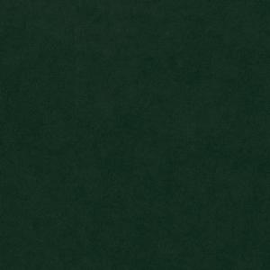 riviera-38-zelena-latka_20914_-0-kc